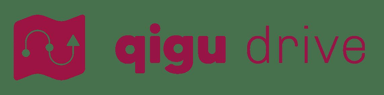 Qigu drive logo